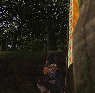 Final Fantasy XI Screenshot