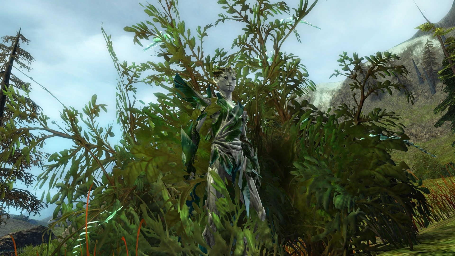 GW2-Where is Wally?