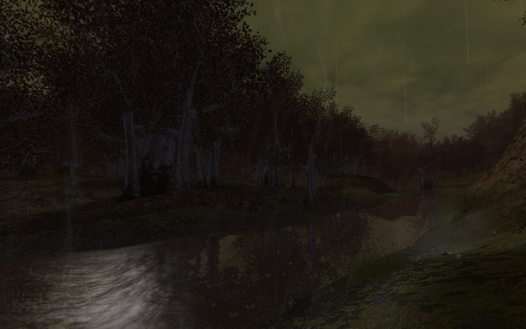 Lord of the Rings Online - A river in Enedwaith during a storm