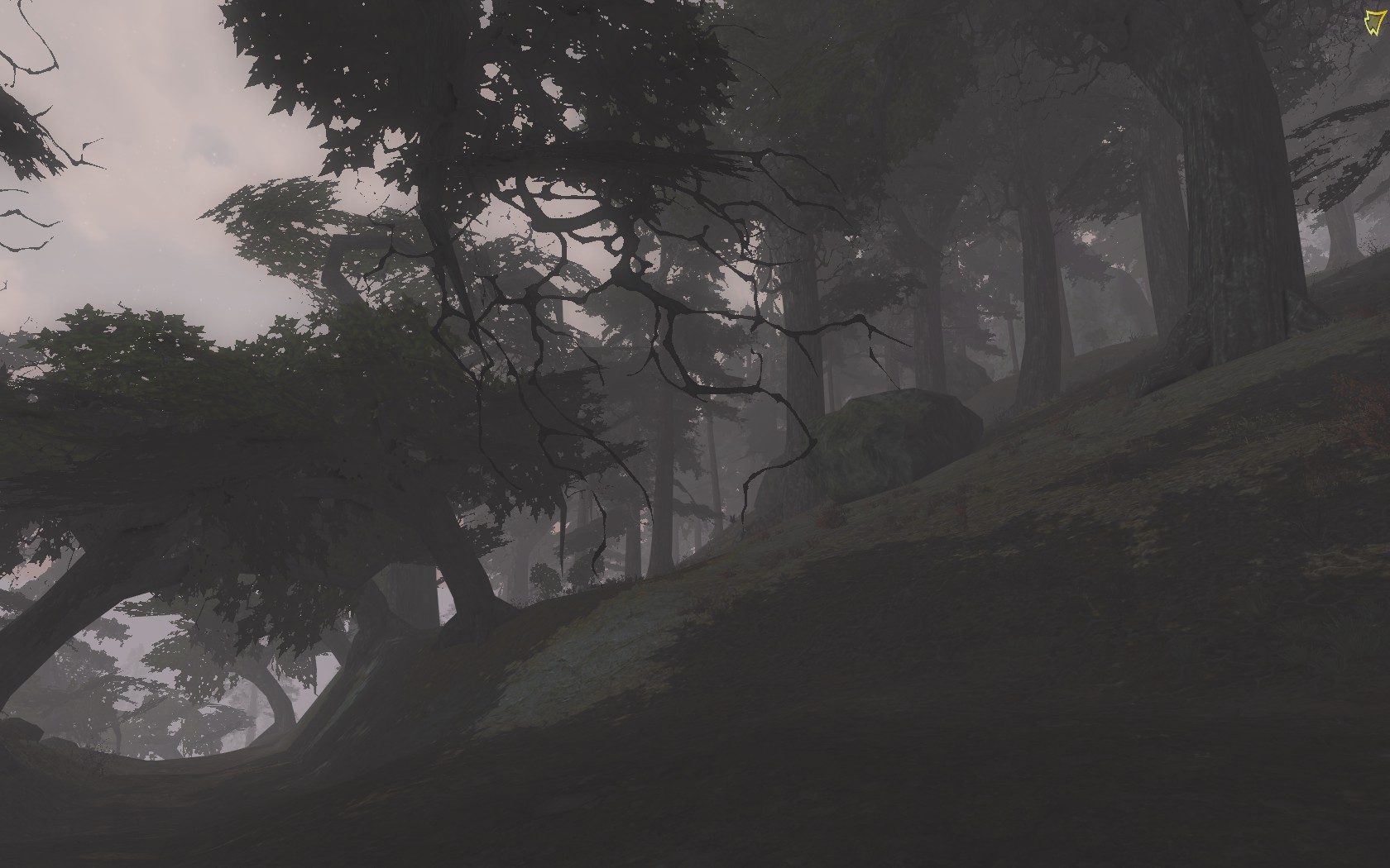 Lord of the Rings Online - A cloudy morning in Mirkwood