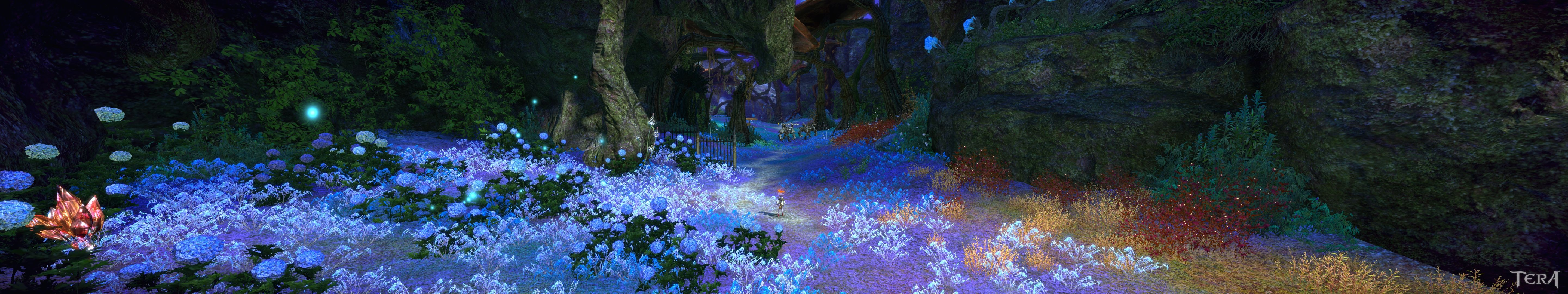 TERA - Pretty blue and other flowers. 3 monitors required to view in full screen resolution.