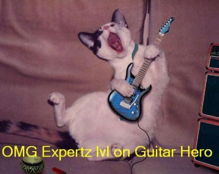 Rock On Mr. Kitty!