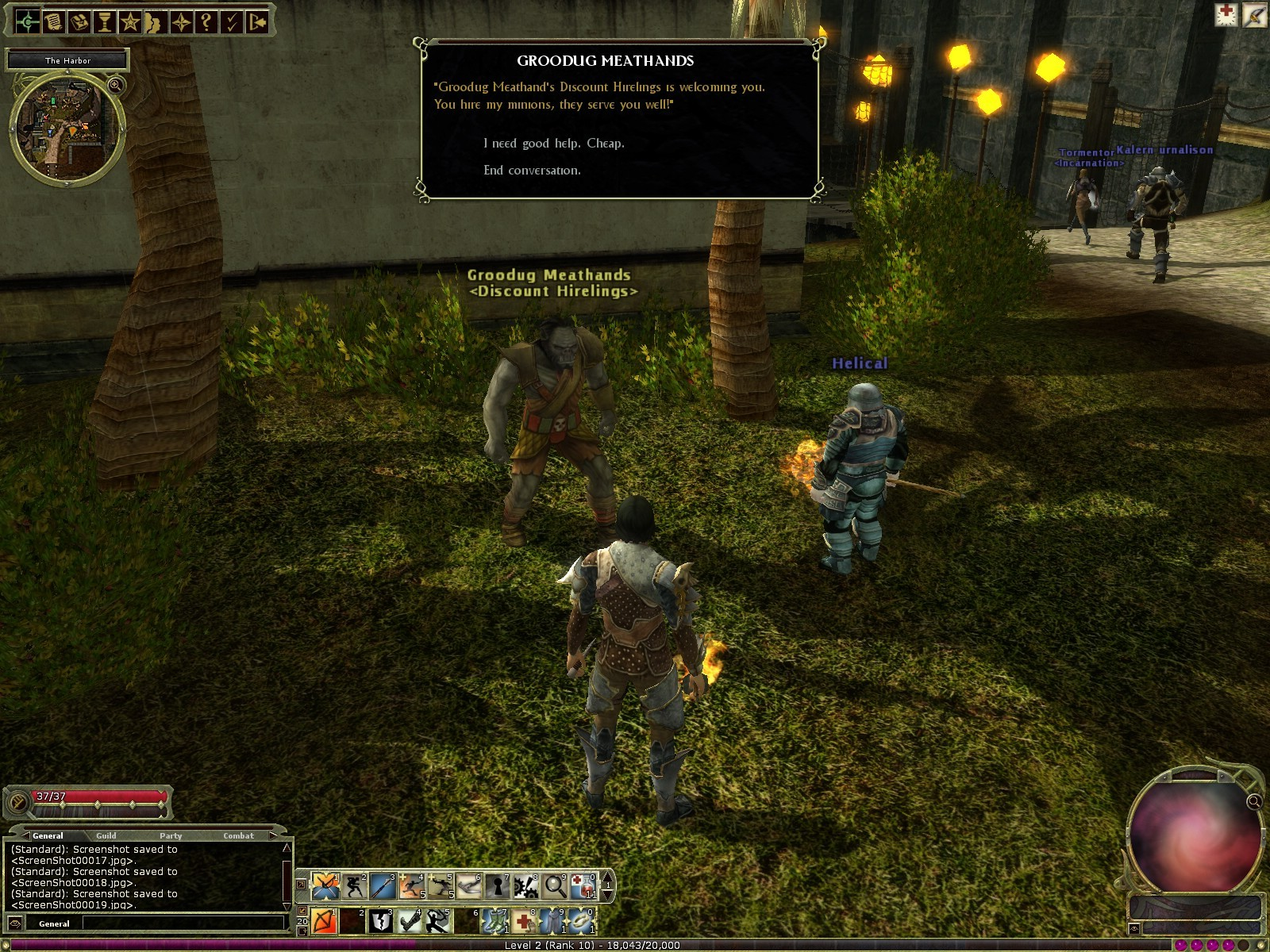 Dungeons & Dragons Online - DDO: Low level hireling vendor. Meathands.