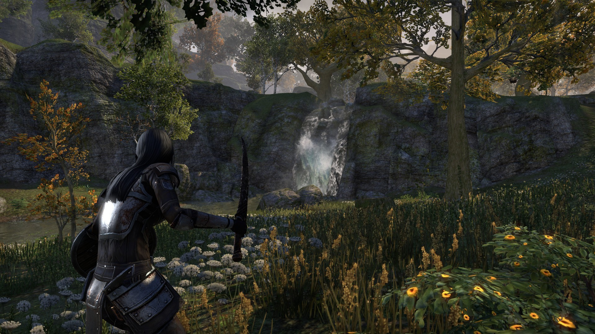 "Elder Scrolls Online - Daggerfall Covenant scenery and ""Me"""