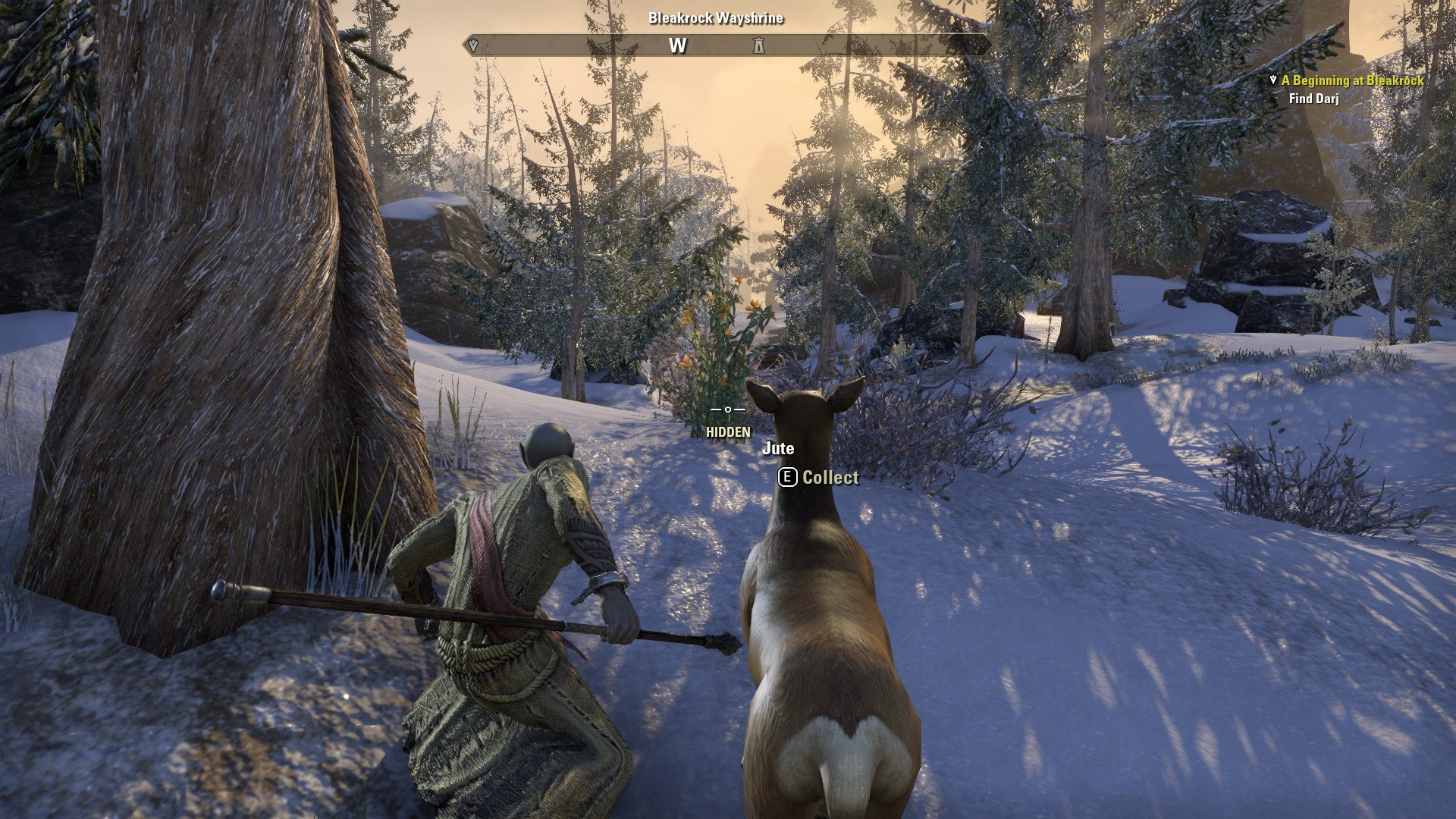 Elder Scrolls Online - Hunting with Deer