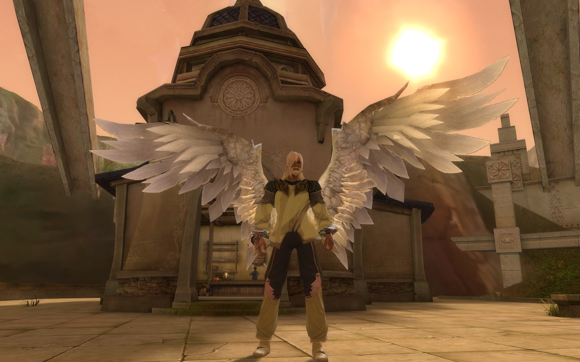 Aion - Just spreading my wings (via emote)