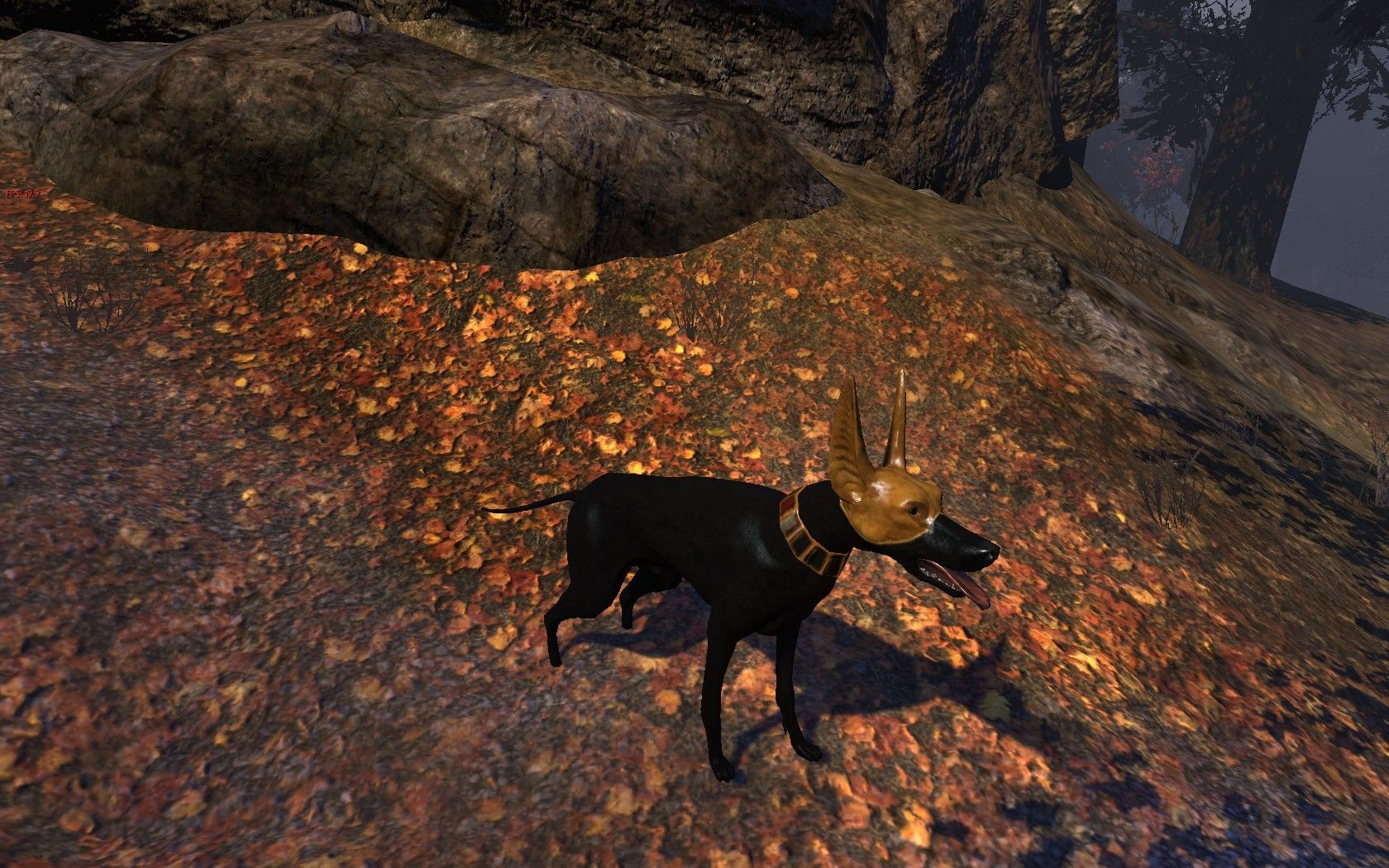 The Secret World - Veteran Reward - Pharaoh Hound
