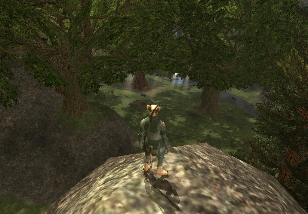 EverQuest II - Watching for trouble