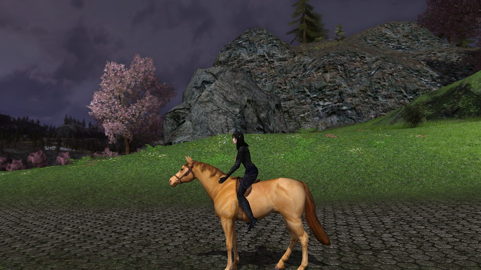 Lord of the Rings Online - Tulueria on her horse