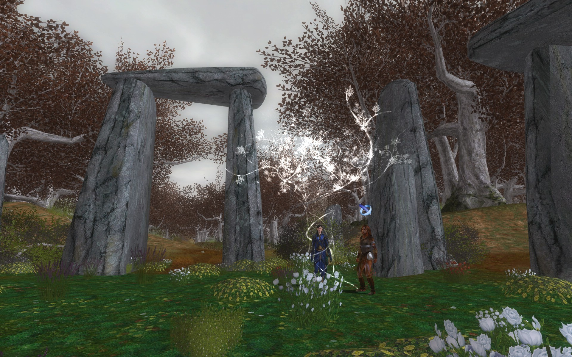 Lord of the Rings Online - Reaching End Level