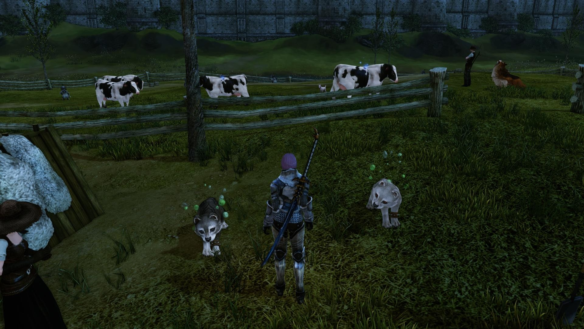 ArcheAge - Raising two wolf pups to become battle pets
