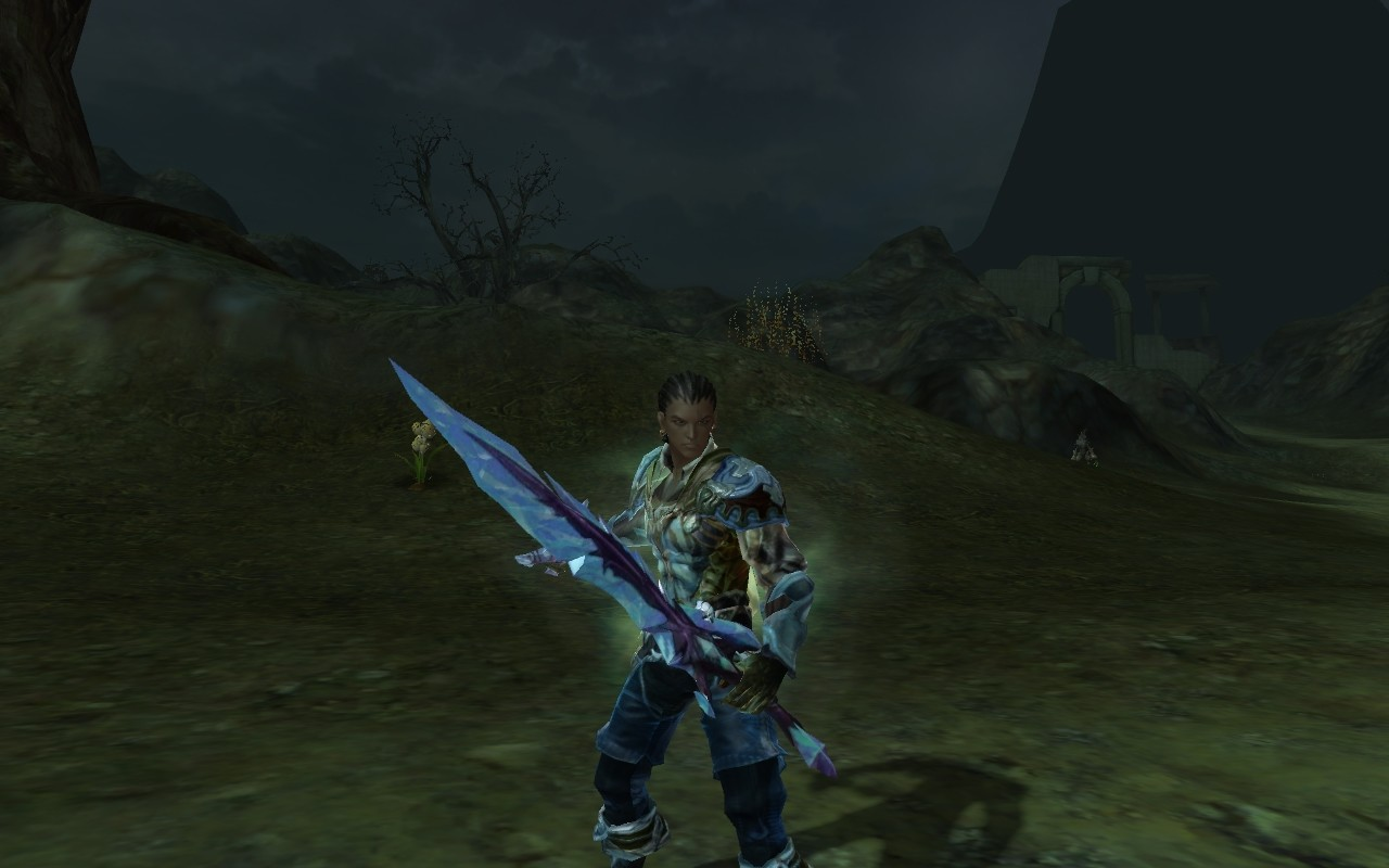 Aion - Level 34 assassin (note that my armor is leather so don't expect me to be a knight. I'm like batman)