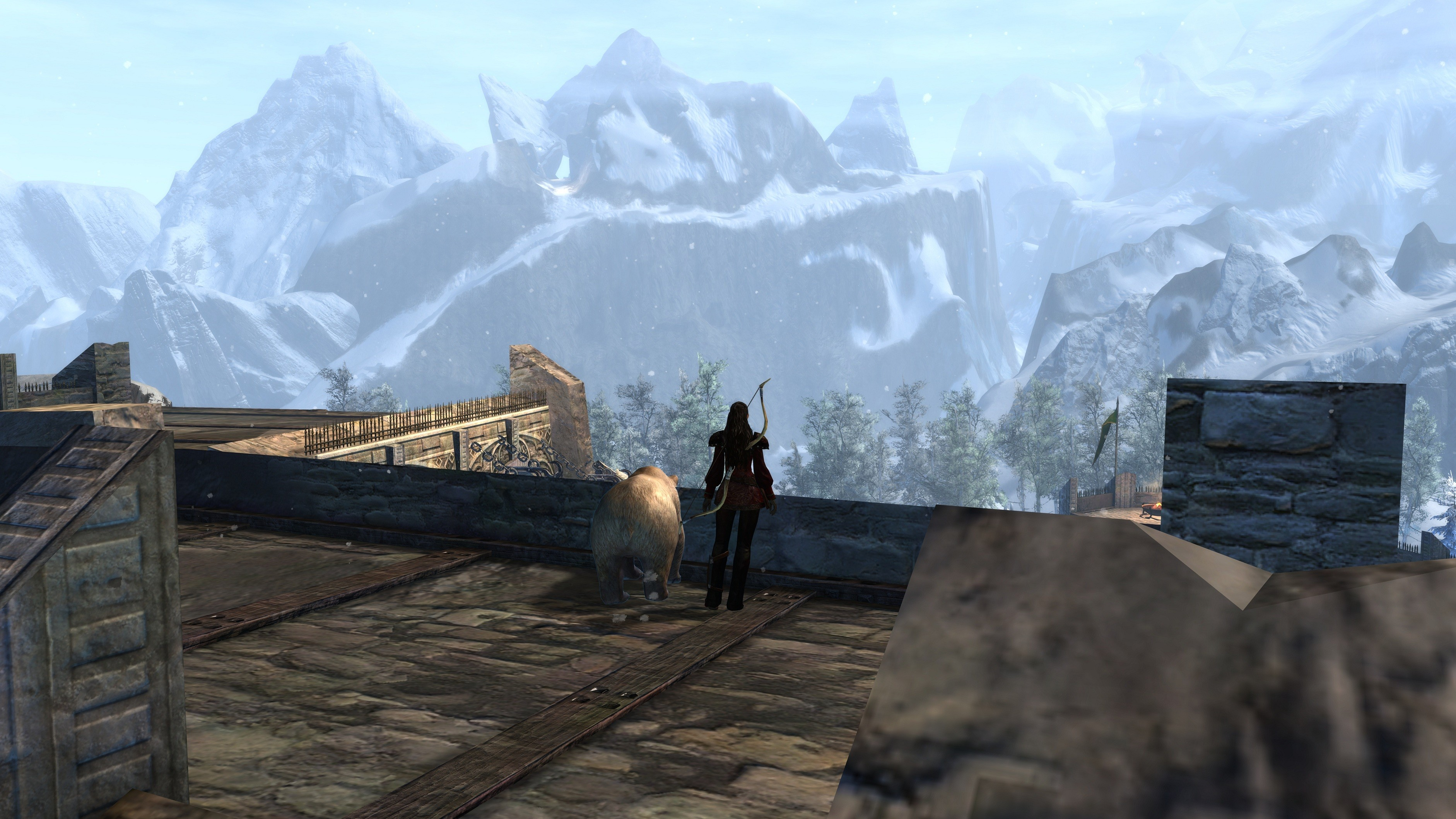 Guild Wars 2 - Good view