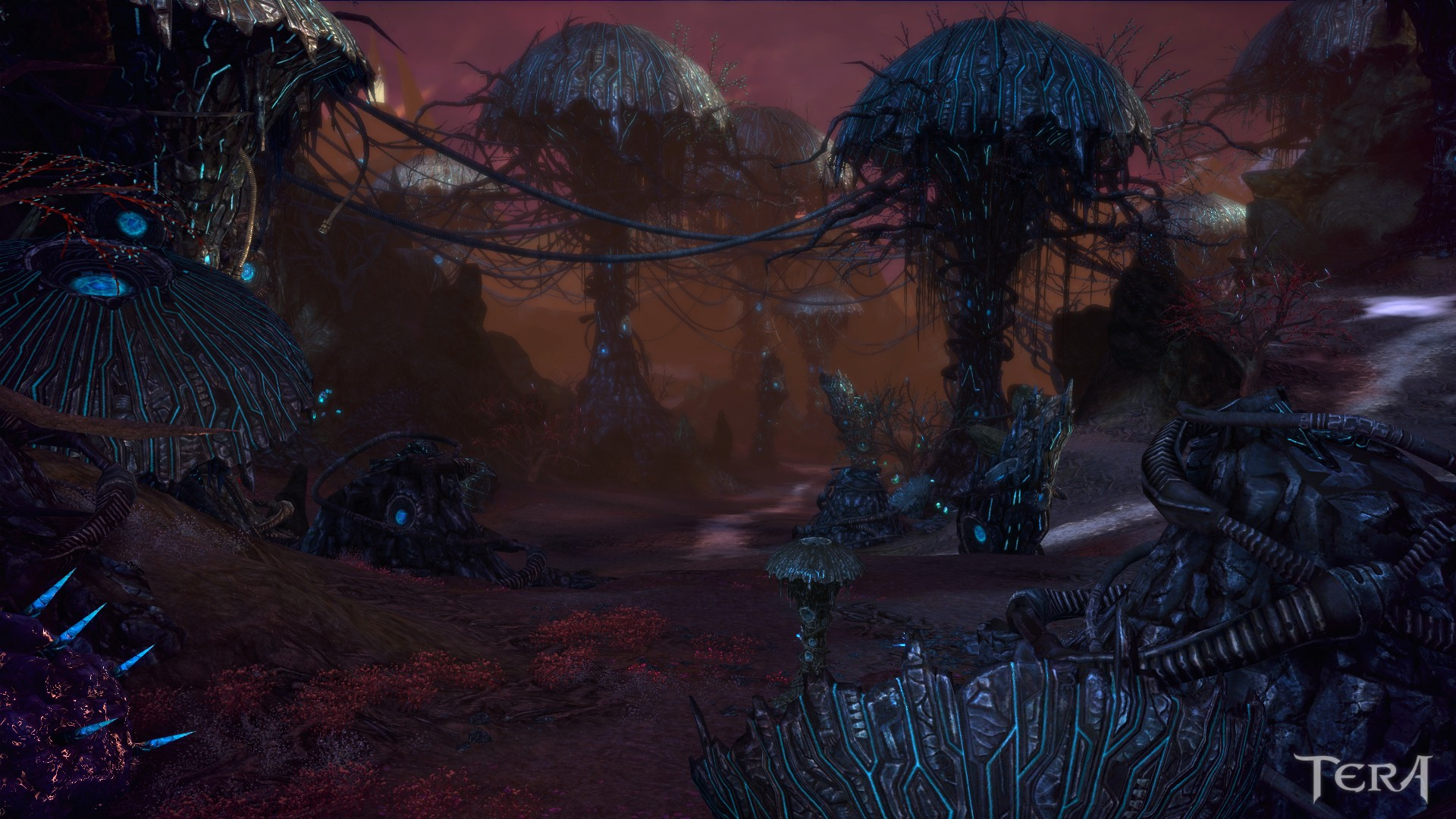 TERA: Rising - Argon Forest