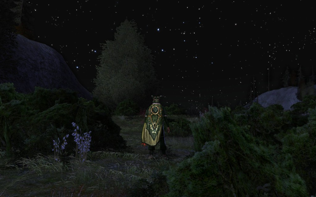 Lord of the Rings Online - My champion class