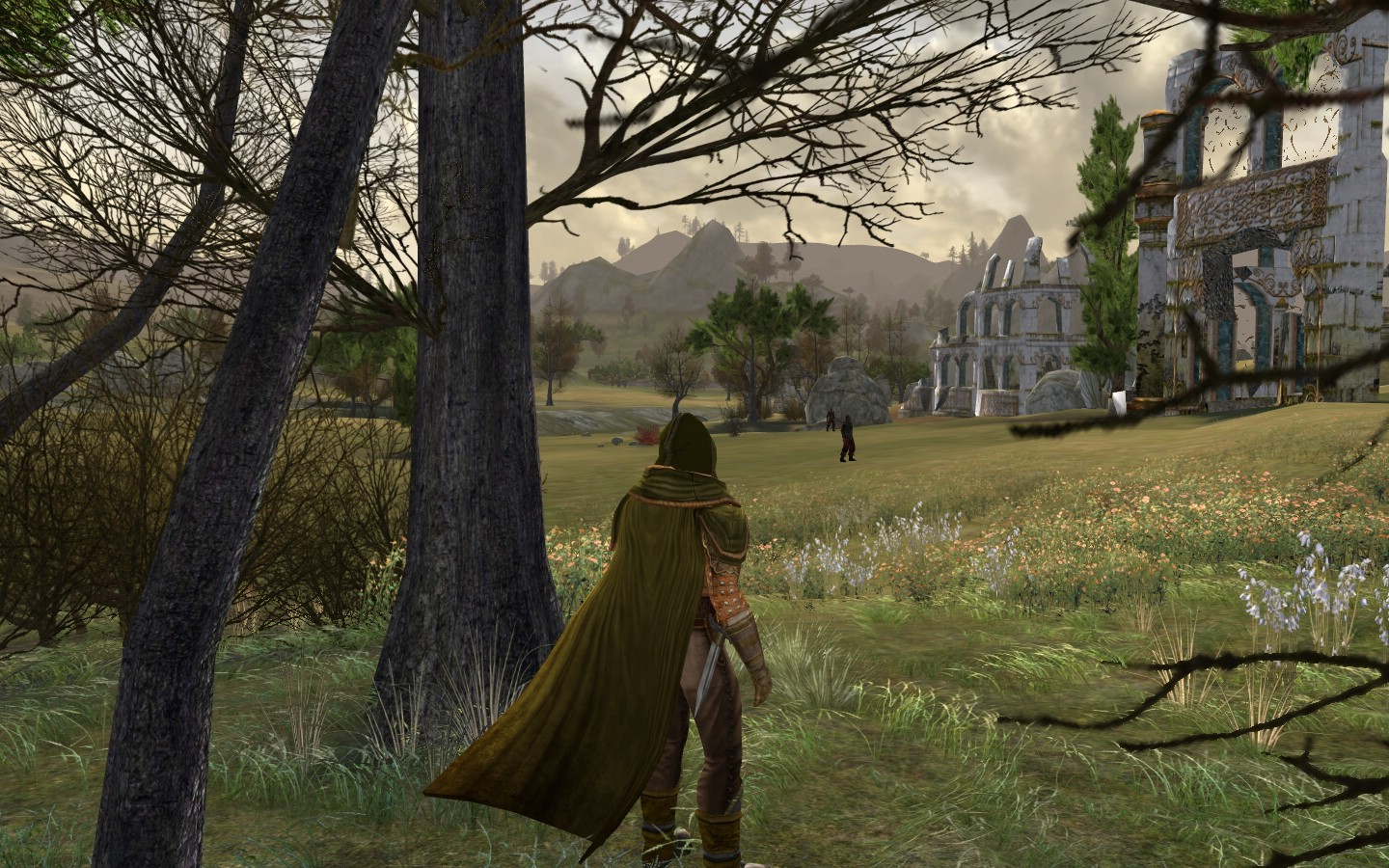 Lord of the Rings Online - (Lotro)Standing outside ruins infested with half-orcs