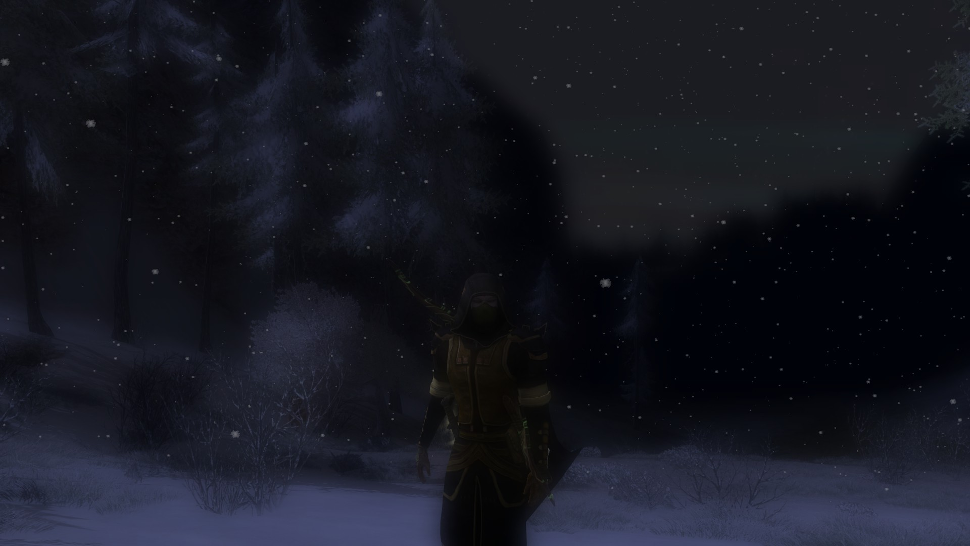 Lord of the Rings Online - A snowy night in Eregion