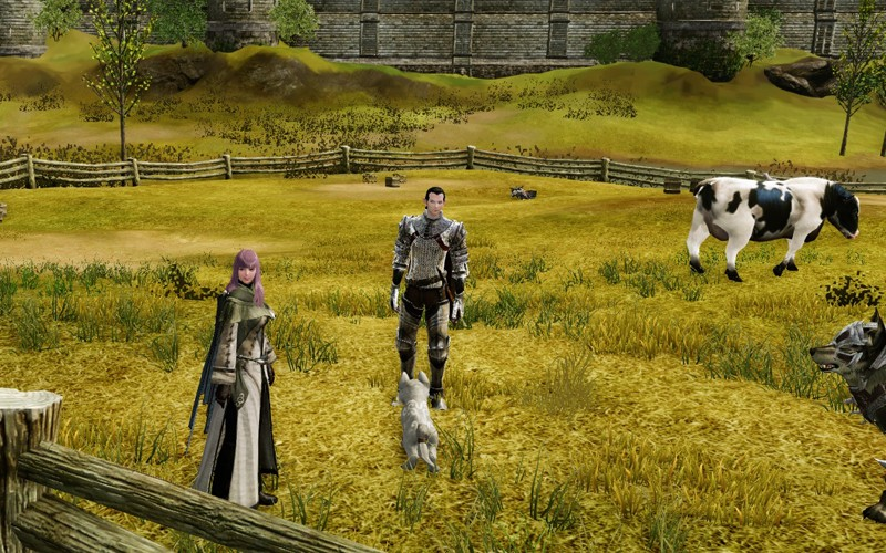 ArcheAge - want to follow the system of the GW2 game!