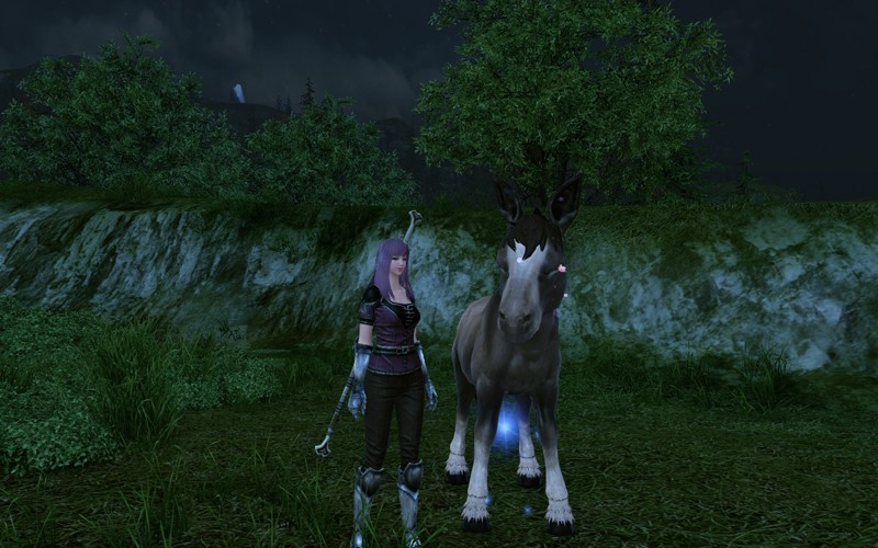 ArcheAge - I brought up a horse.