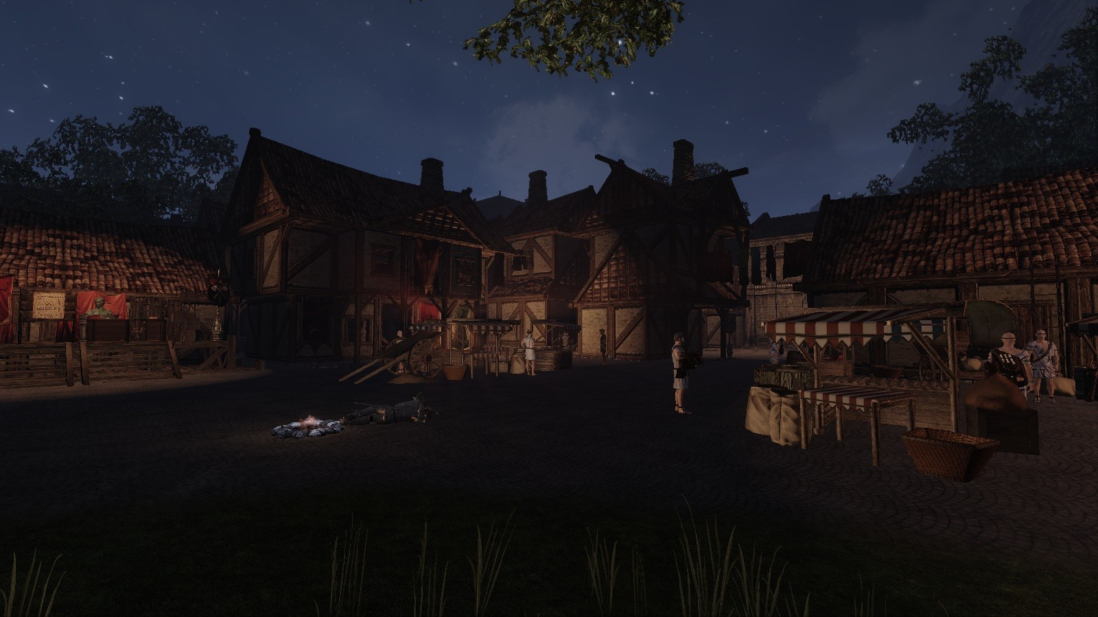 Mortal Online - Fabernum at Night
