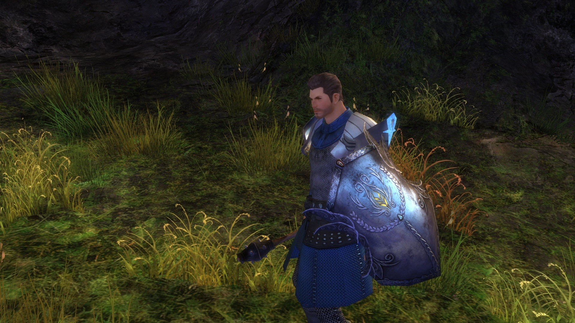 Guild Wars 2 - Awesome looking shield I found.