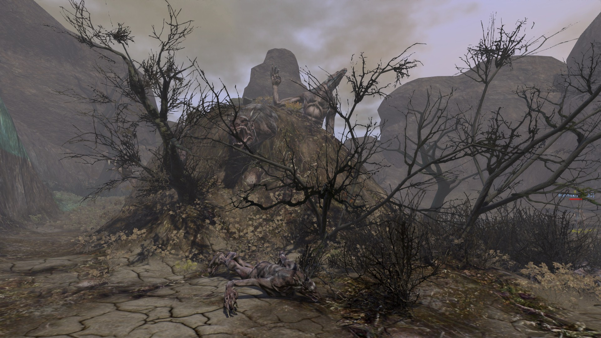Age of Conan: Unchained - Nice little hill there