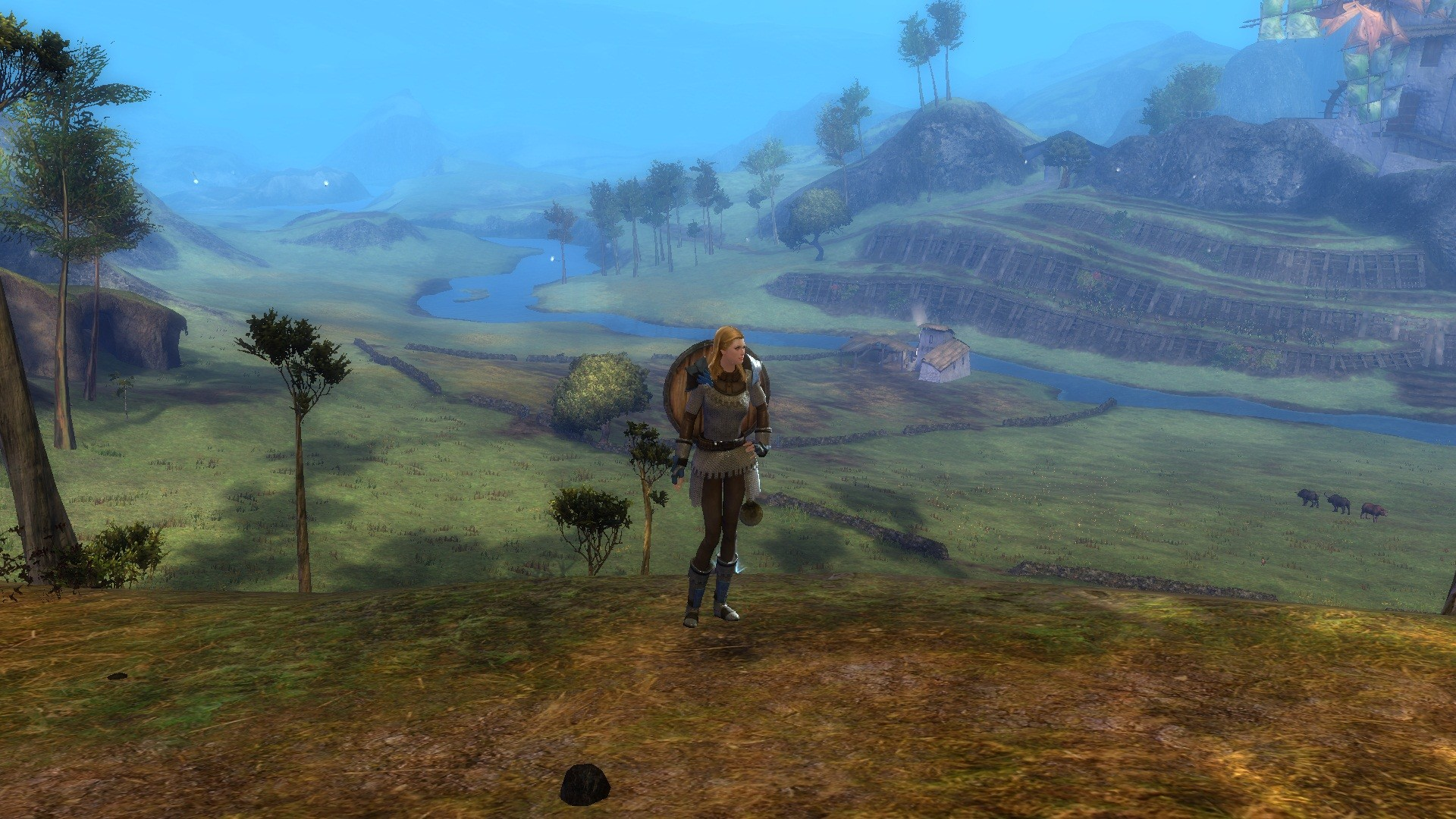 Guild Wars 2 - nice view