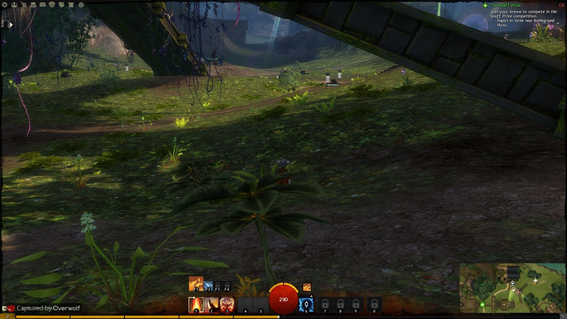 GW2 FTW ... but slow lvl up :\
