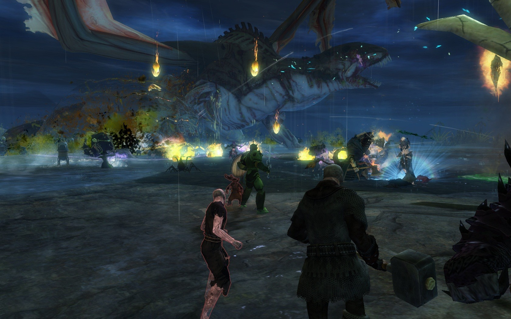 Guild Wars 2 - Cohas fighting a Dragon