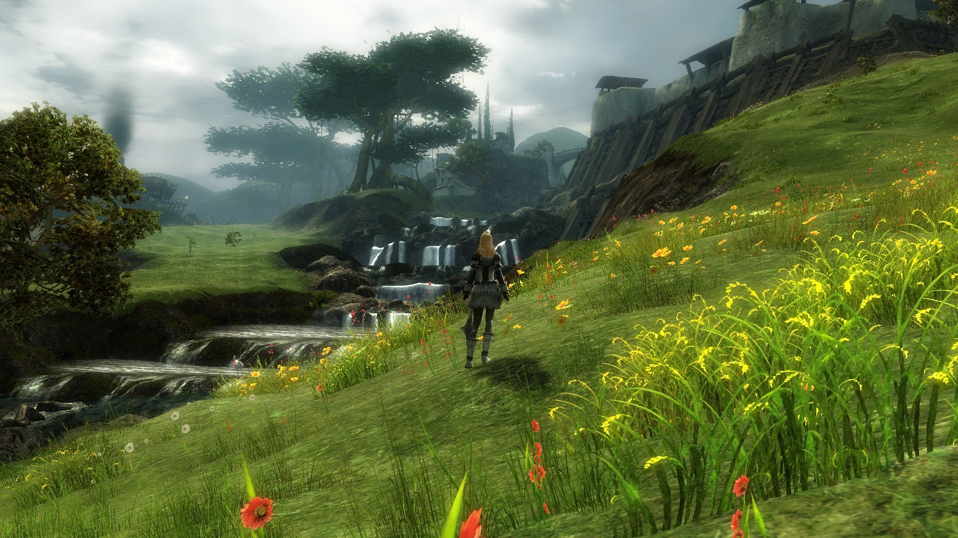 Guild Wars 2 - Exploring found that place