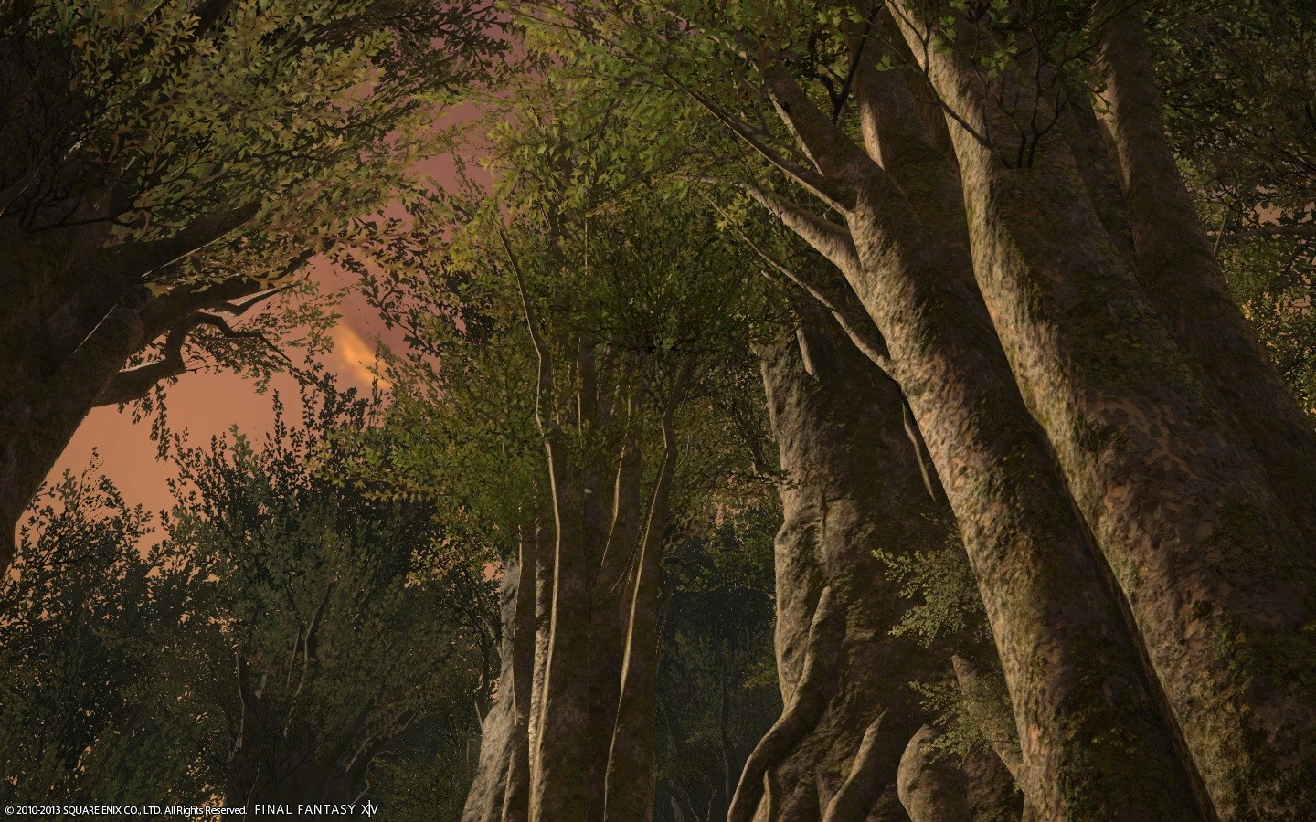 Final Fantasy XIV: A Realm Reborn - Late Afternoon