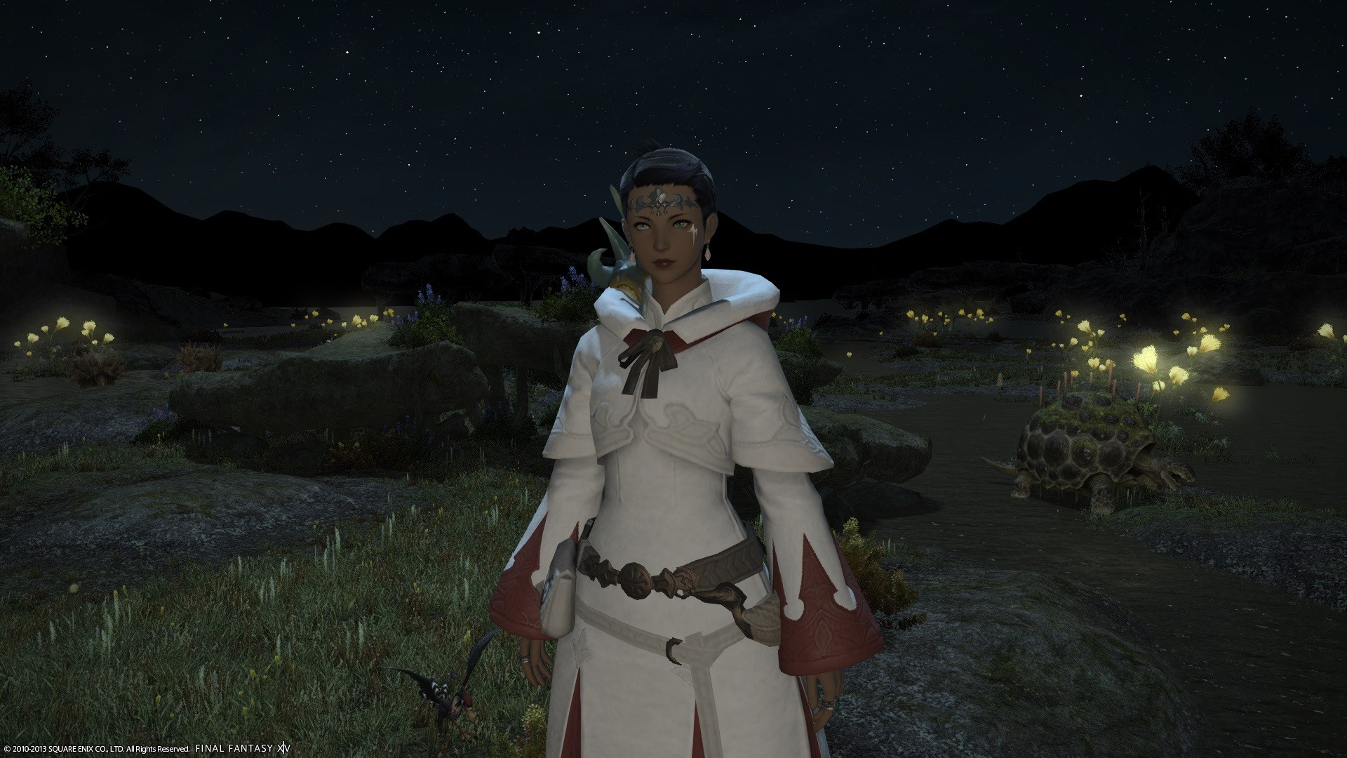 My White Mage dinged 50