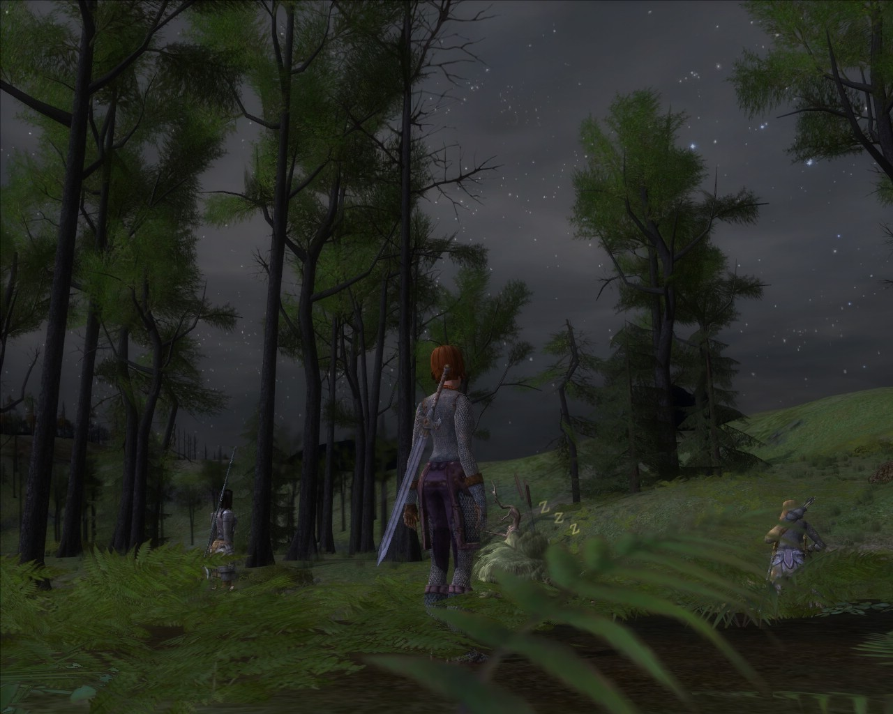 Lord of the Rings Online - Quiet Night in the North Downs.