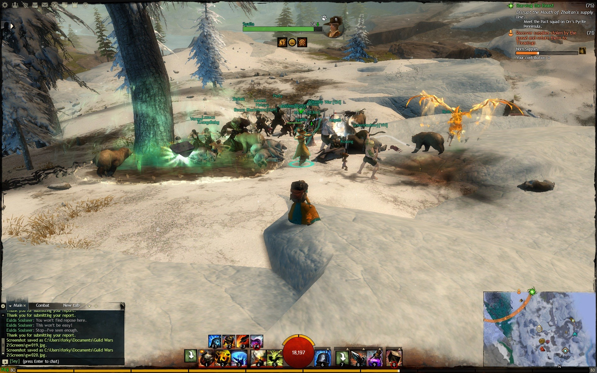 Guild Wars 2 - Wrong Game