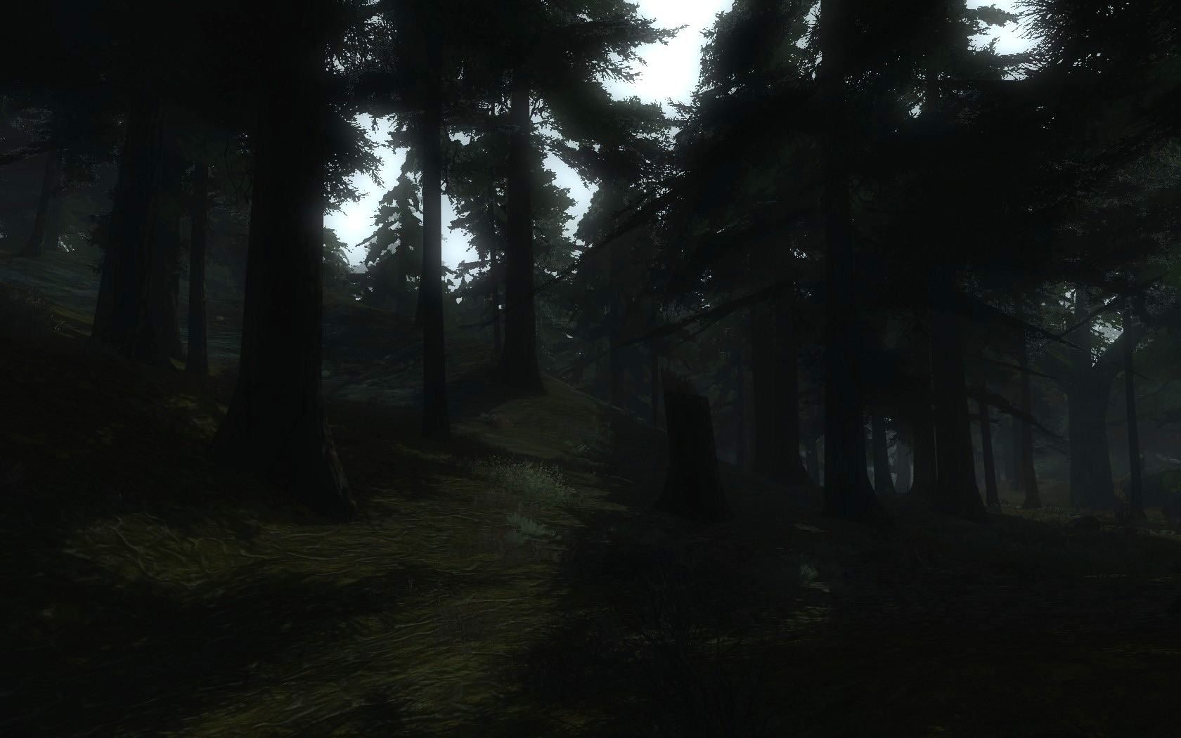 Lord of the Rings Online - Gloomy Mirkwood