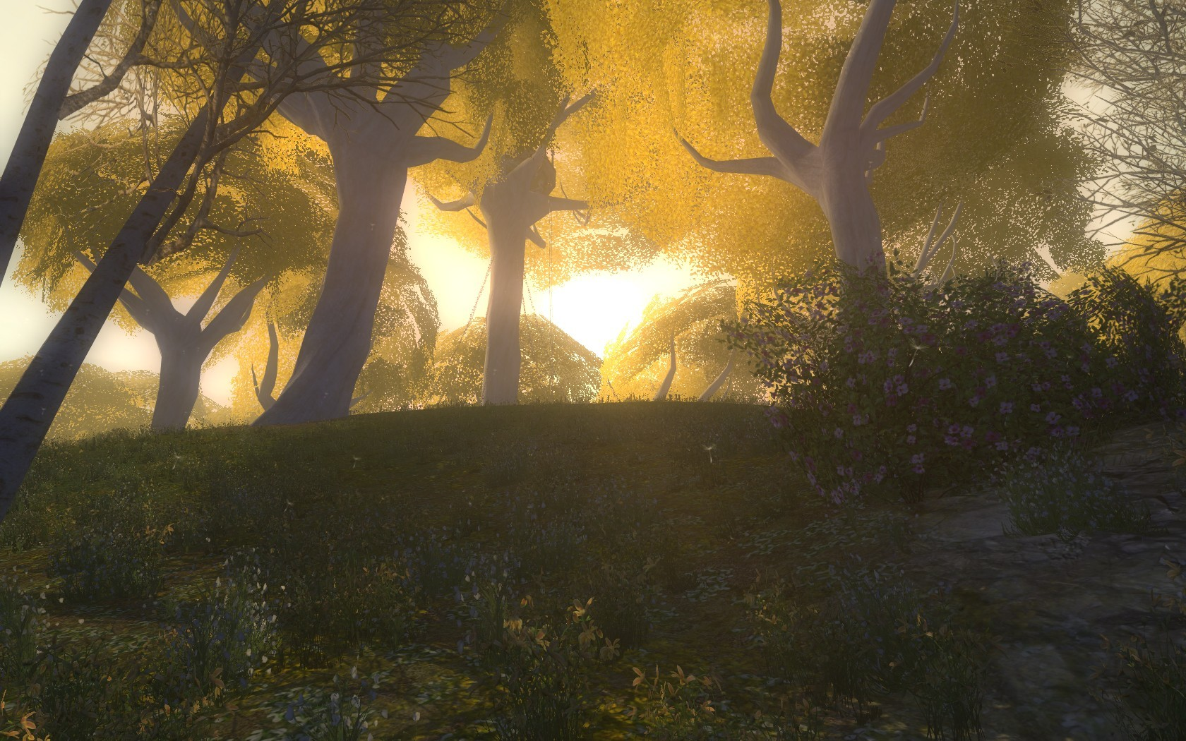 Lord of the Rings Online - Lothlorien