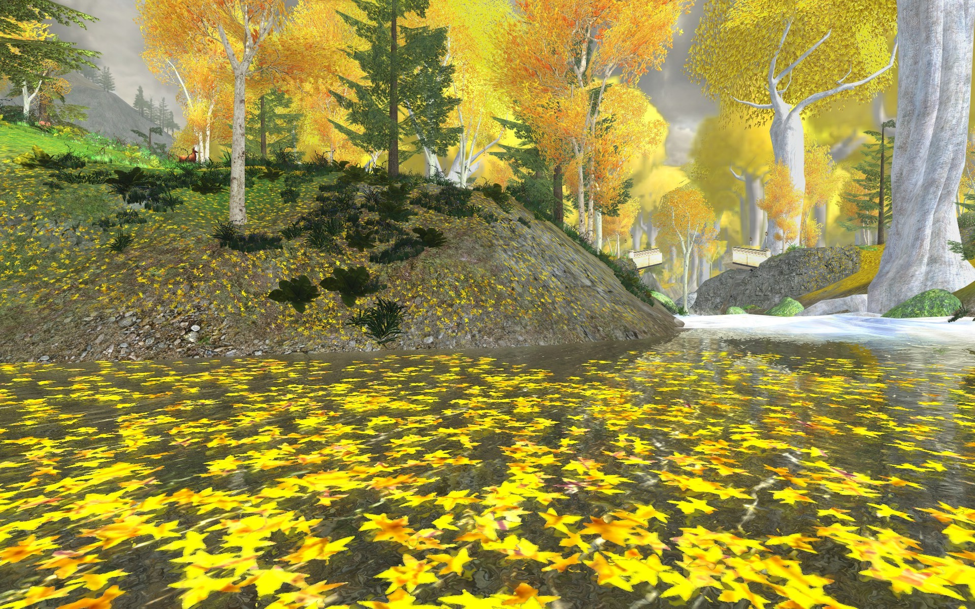 Lord of the Rings Online - Leaves on the water