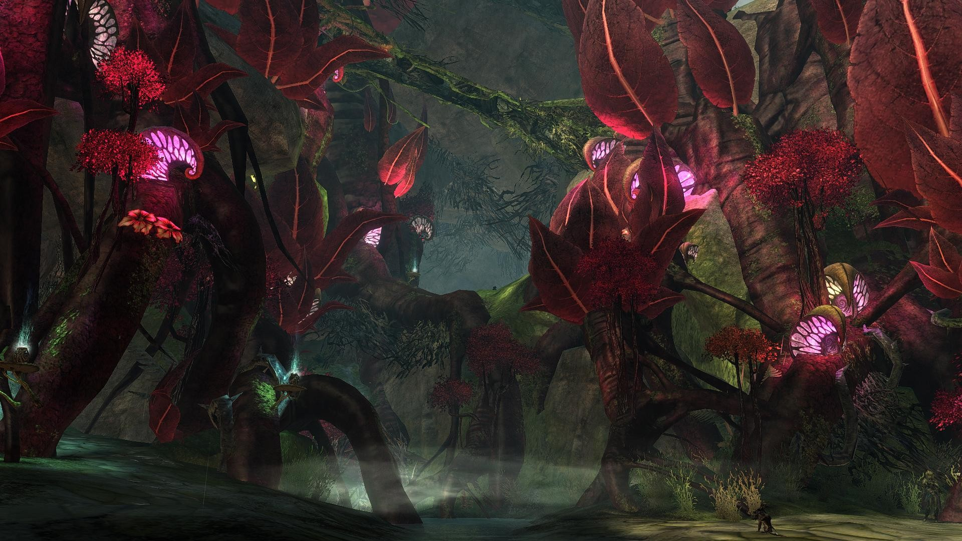 GW2-Awesomeness. Using Sweet FX adon on this pic!