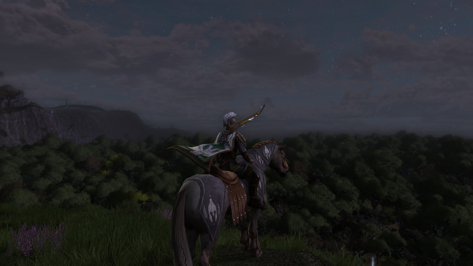 Lord of the Rings Online - This is my first time up this hill.....