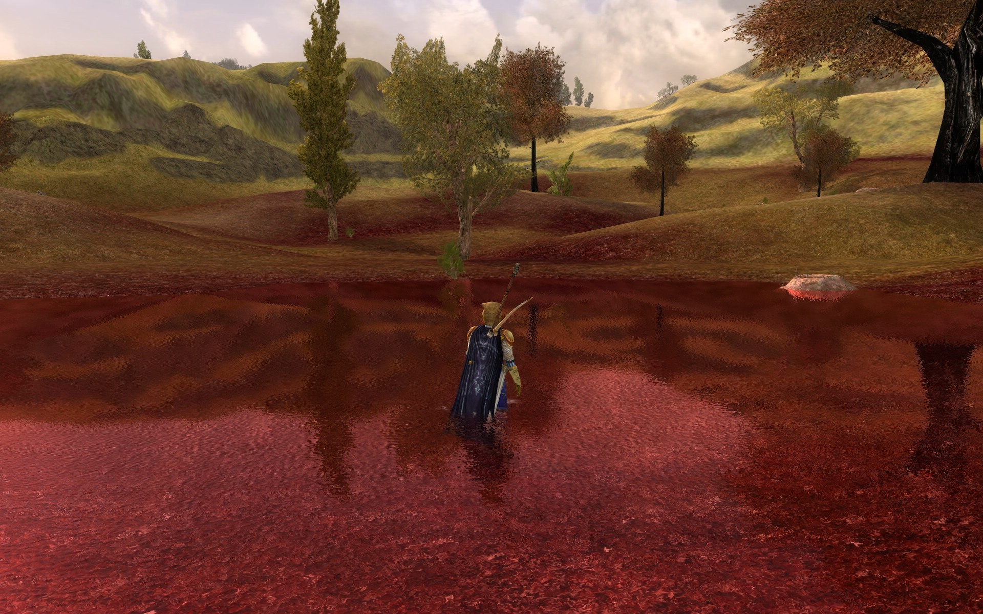 Lord of the Rings Online - bloodbogs
