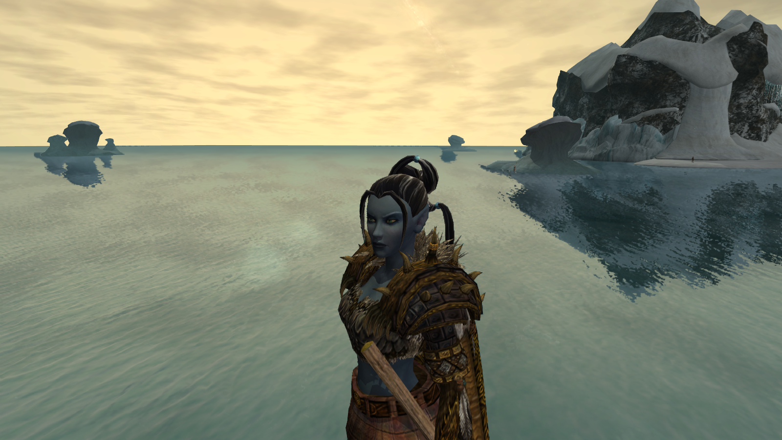 EverQuest II - Looking on.