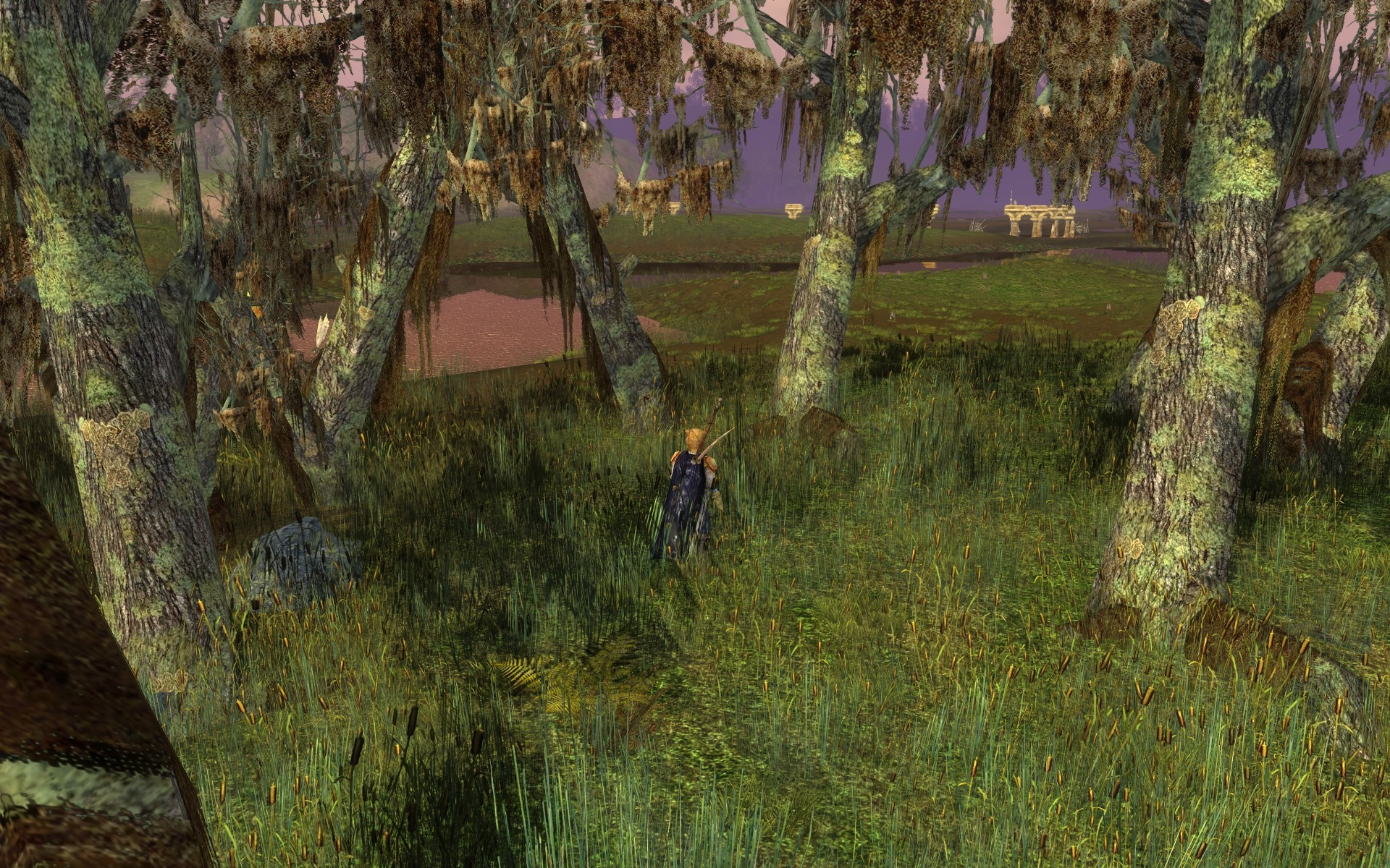 Lord of the Rings Online - diverse plantlife