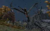 Age of Conan: Unchained - Contemplate this on the Tree of Woe...