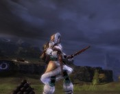 Guild Wars 2 - What do I do with these?