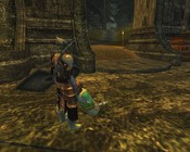 Lord of the Rings Online - I'm the perfect height.