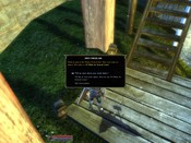 Dungeons & Dragons Online - DDO: Renting skates... Can you do it in your MMO?