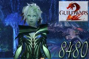 Guild Wars 2 - image 8480