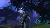 Aion - Forest