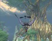 Warhammer Online: Age of Reckoning - Getting a phat lift to the tree top.