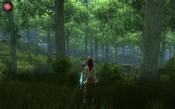 Dungeons & Dragons Online - King's Forest